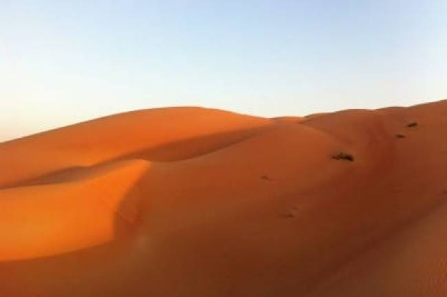 Why Should You Choose Morning Desert Safari In Dubai?