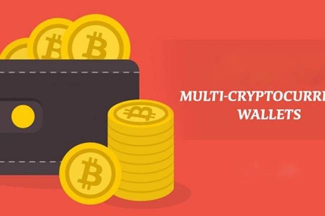Top 5 Multi-Cryptocurrency Wallets in 2021