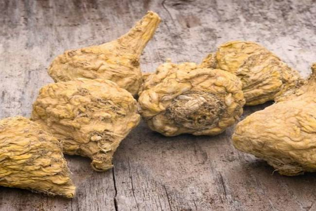 Does Taking Maca for Male Fertility and Stamina Actually Work?