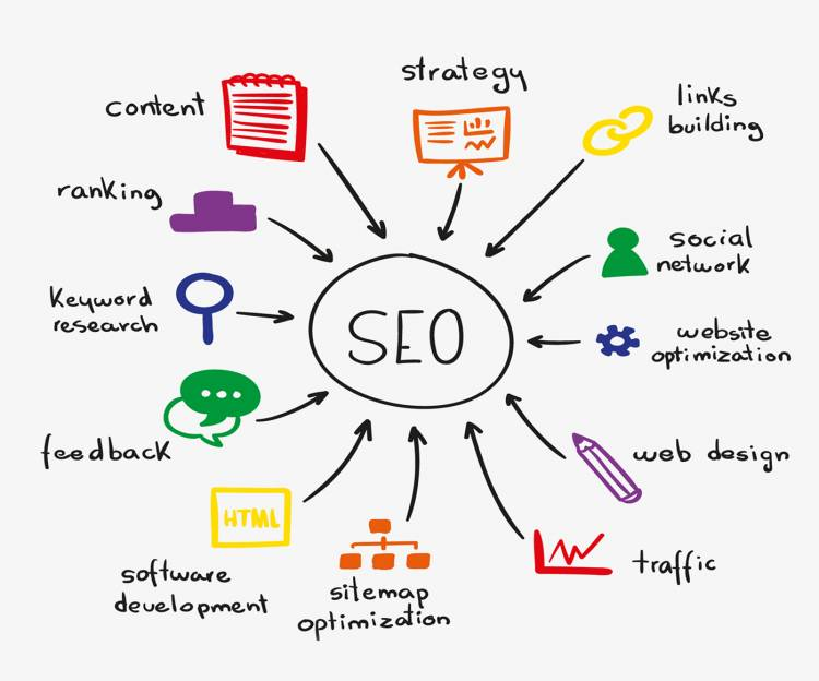 Best Local SEO Expert & Consultant Company in India