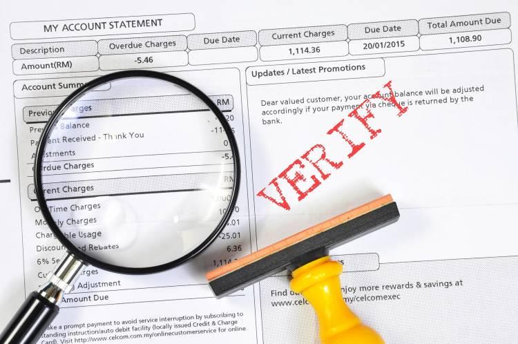 Combating Financial Fraud via Document Verification Solutions