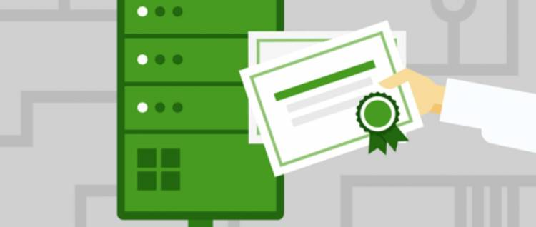 Certificate Authority: What Role Does It Play In PKI Solution?
